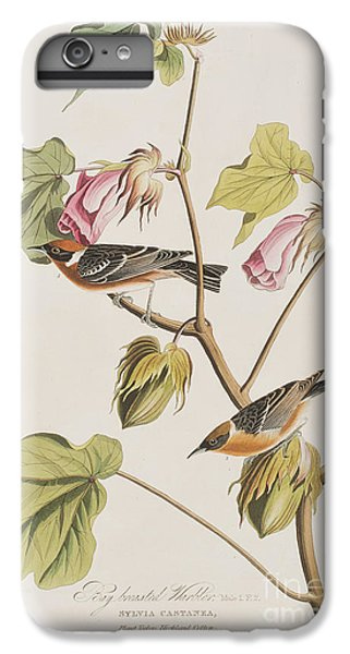 Bay Breasted Warbler IPhone 7 Plus Case by John James Audubon