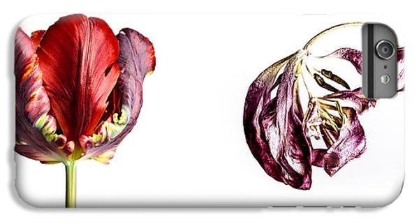 Tulip iPhone 7 Plus Case - Fading Beauty by Nailia Schwarz