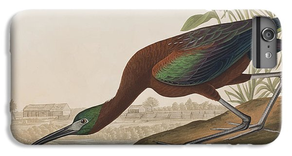 Ibis iPhone 7 Plus Case - Glossy Ibis by John James Audubon