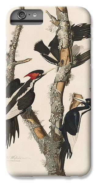 Woodpecker iPhone 7 Plus Case - Ivory-billed Woodpecker by Dreyer Wildlife Print Collections