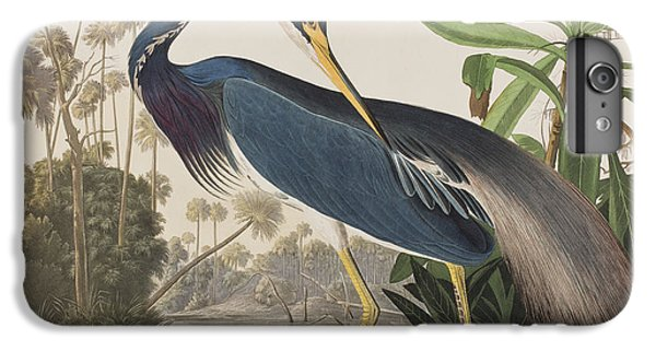 Louisiana Heron  IPhone 7 Plus Case by John James Audubon