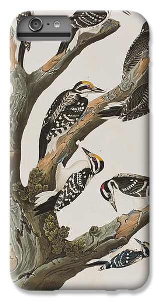Woodpeckers IPhone 7 Plus Case