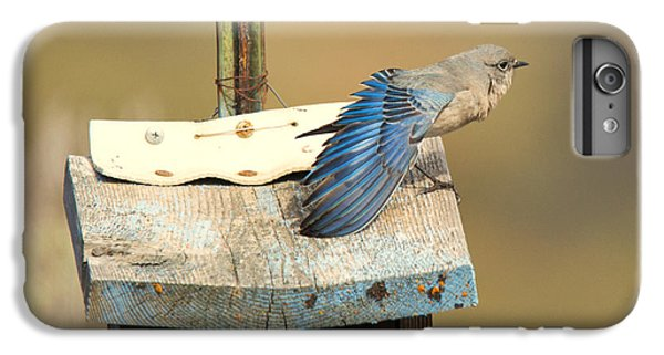 Spread Your Wings IPhone 7 Plus Case by Mike Dawson