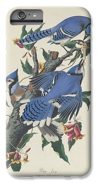 Blue Jay IPhone 7 Plus Case by Rob Dreyer