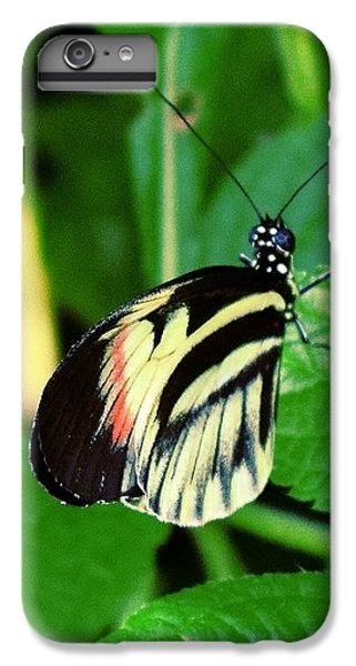 Butterfly No. 4 IPhone 7 Plus Case