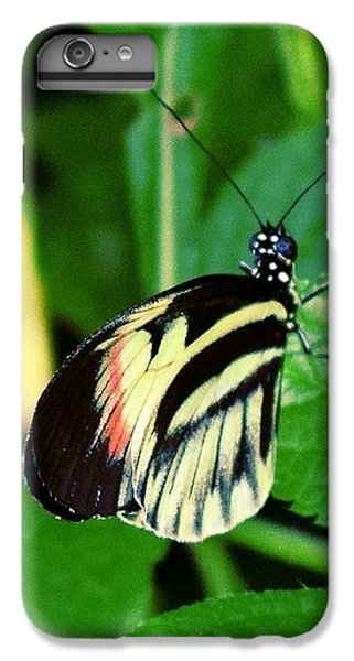 Butterfly No. 4 IPhone 7 Plus Case by Sandy Taylor
