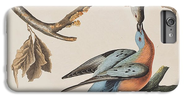 Passenger Pigeon IPhone 7 Plus Case by John James Audubon