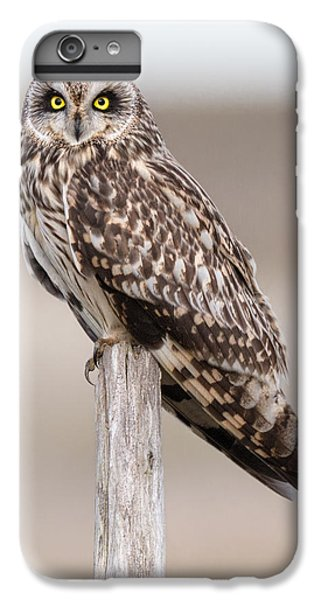 Short Eared Owl IPhone 7 Plus Case