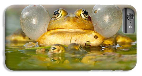 Frogs iPhone 7 Plus Case - A Frog's Life by Roeselien Raimond