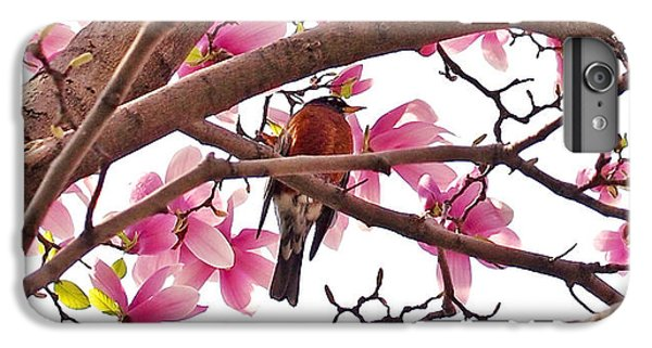 Robin iPhone 7 Plus Case - A Songbird In The Magnolia Tree - Square by Rona Black