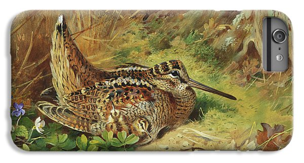 A Woodcock And Chicks IPhone 7 Plus Case by Archibald Thorburn