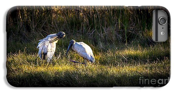 Spoonbill iPhone 7 Plus Case - Almost Bed Time by Marvin Spates