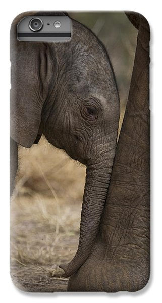 Cow iPhone 7 Plus Case - An Elephant Calf Finds Shelter Amid by Michael Nichols
