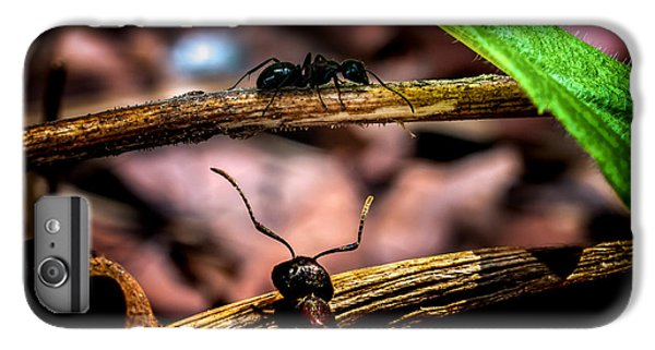 Ants Adventure IPhone 7 Plus Case by Bob Orsillo