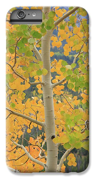 Aspen Watching You IPhone 7 Plus Case by David Chandler