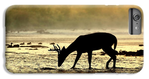 Deer iPhone 7 Plus Case - At Home by Rob Blair