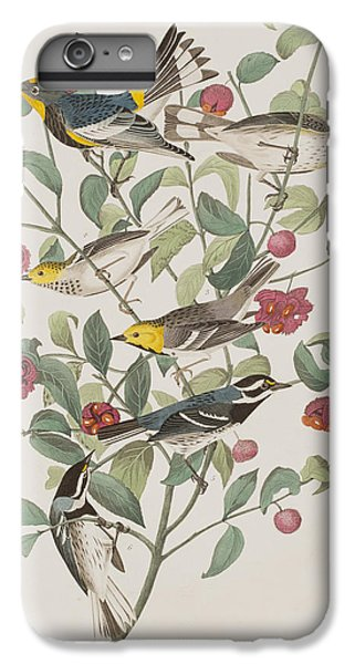 Audubons Warbler Hermit Warbler Black-throated Gray Warbler IPhone 7 Plus Case by John James Audubon