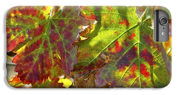 IPhone 7 Plus Case featuring the photograph Autumn At Lachish Vineyards 2 by Dubi Roman