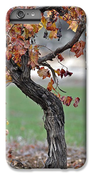 IPhone 7 Plus Case featuring the photograph Autumn At Lachish Vineyards 3 by Dubi Roman