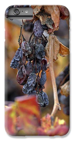 IPhone 7 Plus Case featuring the photograph Autumn At Lachish Vineyards 4 by Dubi Roman