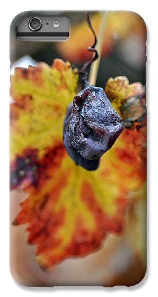 IPhone 7 Plus Case featuring the photograph Autumn At Lachish Vineyards 5 by Dubi Roman
