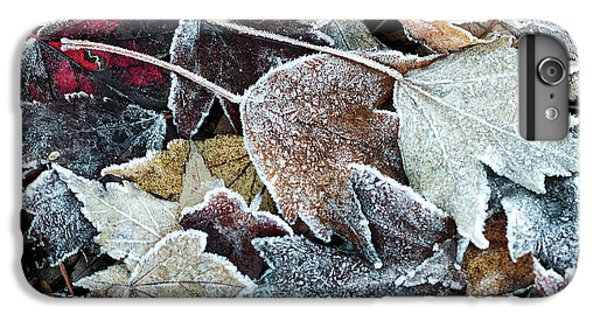 Autumn Ends, Winter Begins 1 IPhone 7 Plus Case
