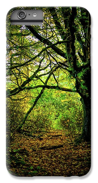 IPhone 7 Plus Case featuring the photograph Autumn Light by David Patterson