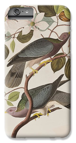 Band-tailed Pigeon  IPhone 7 Plus Case by John James Audubon
