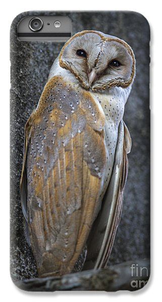 Barn Owl IPhone 7 Plus Case