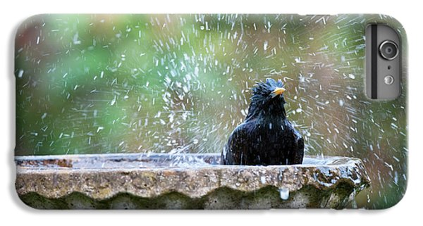 Starlings iPhone 7 Plus Case - Bath Time by Tim Gainey