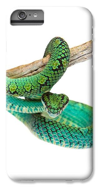 Viper iPhone 7 Plus Case - Beautiful Sri Lankan Palm Viper by Susan Schmitz