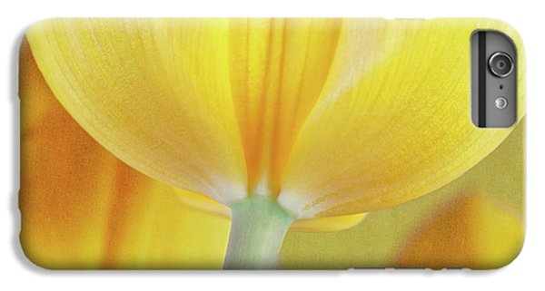 Tulip iPhone 7 Plus Case - Beneath The Yellow Tulip by Tom Mc Nemar