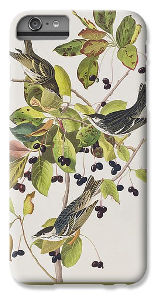 Black Poll Warbler IPhone 7 Plus Case by John James Audubon