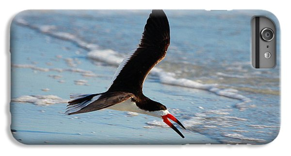 Black Skimmer IPhone 7 Plus Case by Barbara Bowen