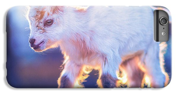 Little Baby Goat Sunset IPhone 7 Plus Case by TC Morgan