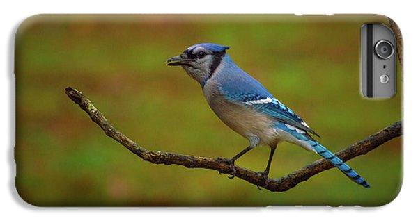 Bluejay iPhone 7 Plus Case - Blue Jay by Lena Auxier