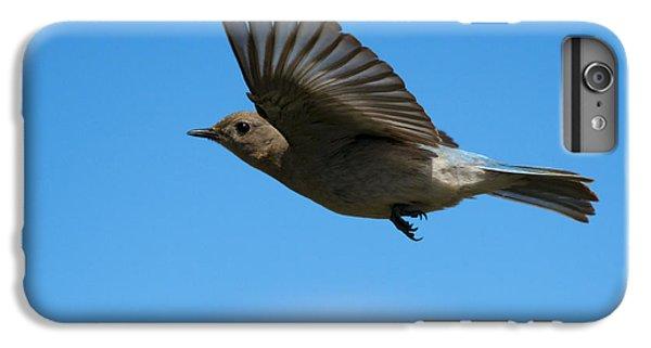 Bluebird Glide IPhone 7 Plus Case by Mike Dawson