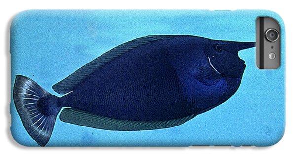 Bluespine Unicorn Fish IPhone 7 Plus Case