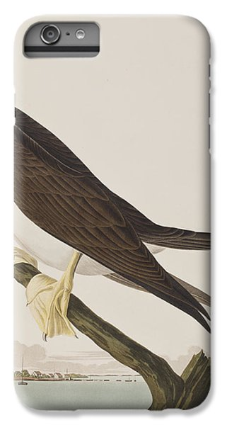 Booby Gannet   IPhone 7 Plus Case by John James Audubon