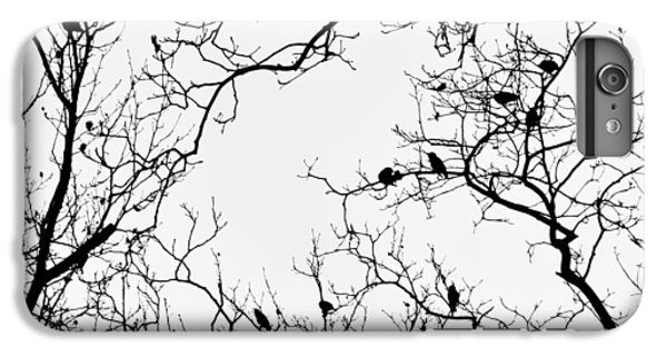 Branches And Birds IPhone 7 Plus Case by Sandy Taylor