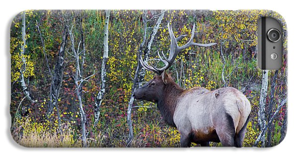 IPhone 7 Plus Case featuring the photograph Bull Elk by Aaron Spong
