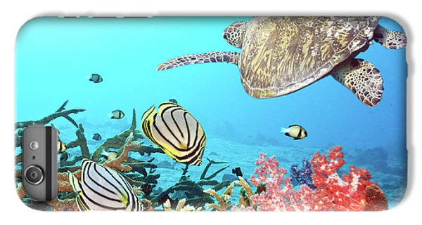 Turtle iPhone 7 Plus Case - Butterflyfishes And Turtle by MotHaiBaPhoto Prints