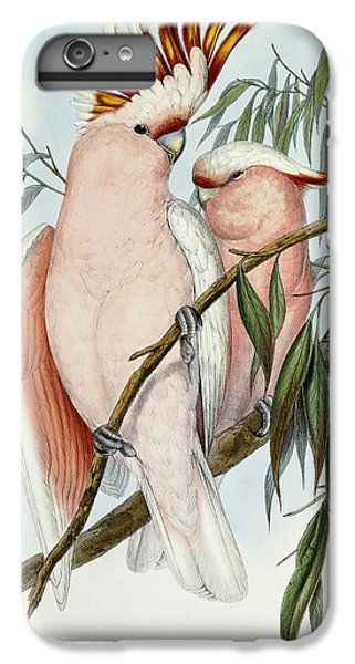 Cacatua Leadbeateri IPhone 7 Plus Case by John Gould