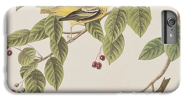 Carbonated Warbler IPhone 7 Plus Case by John James Audubon