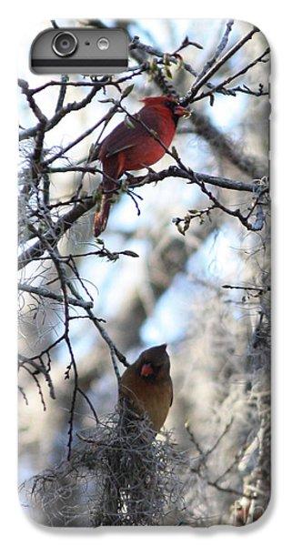 Lovebird iPhone 7 Plus Case - Cardinals In Mossy Tree by Carol Groenen
