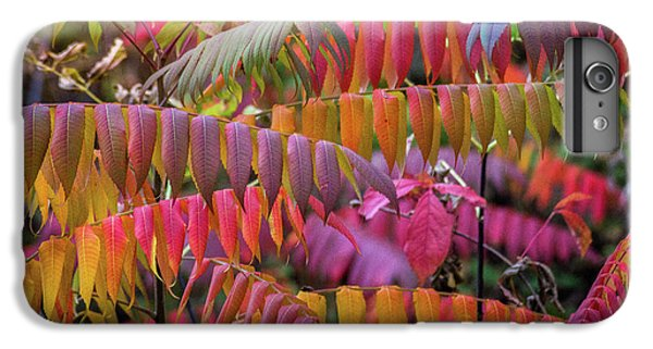 IPhone 7 Plus Case featuring the photograph Carnival Of Autumn Color by Bill Pevlor