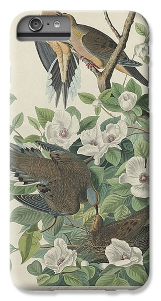 Carolina Pigeon Or Turtle Dove IPhone 7 Plus Case by Rob Dreyer