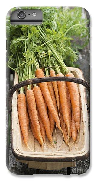 Carrots IPhone 7 Plus Case