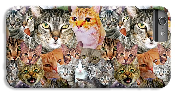Cats IPhone 7 Plus Case by Gloria Sanchez