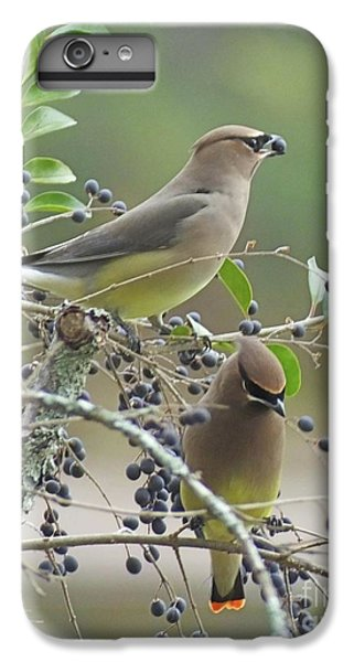 Cedar Wax Wings IPhone 7 Plus Case by Lizi Beard-Ward